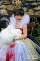 Queen of Hearts Tutu Dress